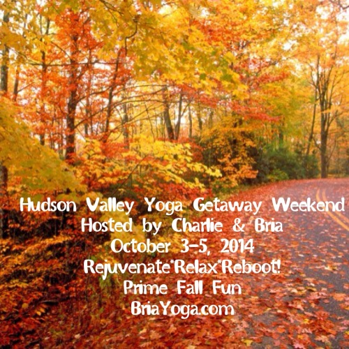 Join us for a yoga weekend away! All levels welcome, including beginners :-)